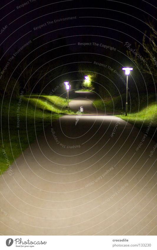 Nachhauseweg Himmel Baum dunkel Wiese Gras Wege & Pfade hell Beleuchtung gehen gefährlich Laterne unheimlich