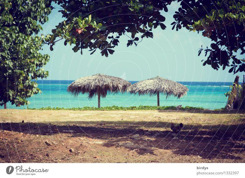 Chilliges Plätzchen Natur Ferien & Urlaub & Reisen Wasser Meer Landschaft ruhig Strand Wärme natürlich Horizont Tourismus Erde authentisch Ast einfach