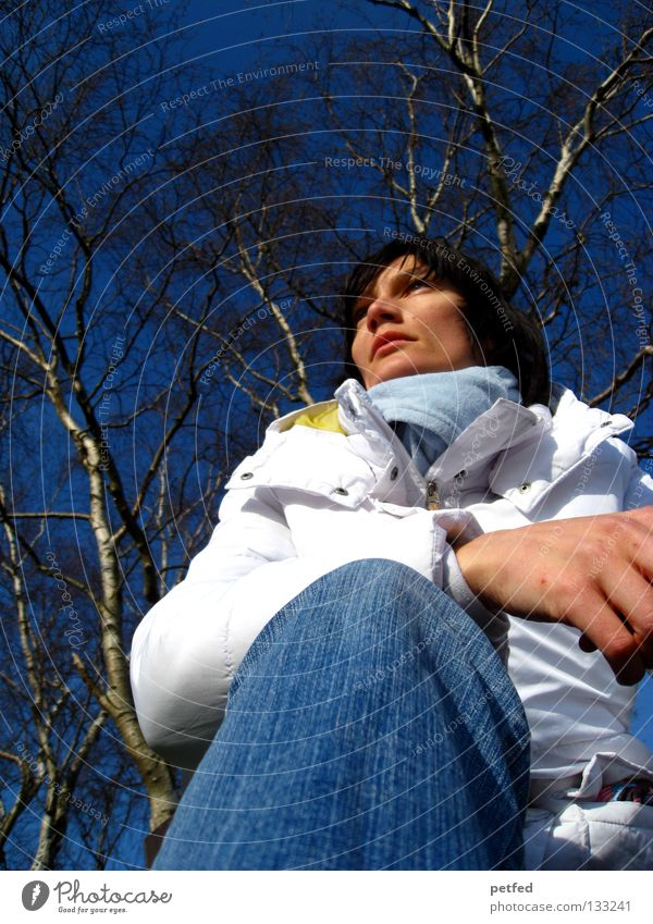 Freie Gedanken Frau Winter kalt Zeit langsam Wunsch Zukunft Denken warten blau Himmel Wetter Natur sitzen Sehne Mensch frei Gefühle Außenaufnahme