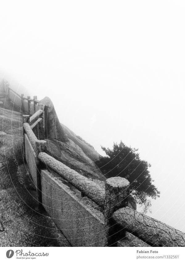 Weg schlechtes Wetter Nebel Stein alt Einsamkeit Höhenangst Zukunftsangst Vergangenheit Vergänglichkeit Wege & Pfade Ziel Traurigkeit Tod Todesanzeige