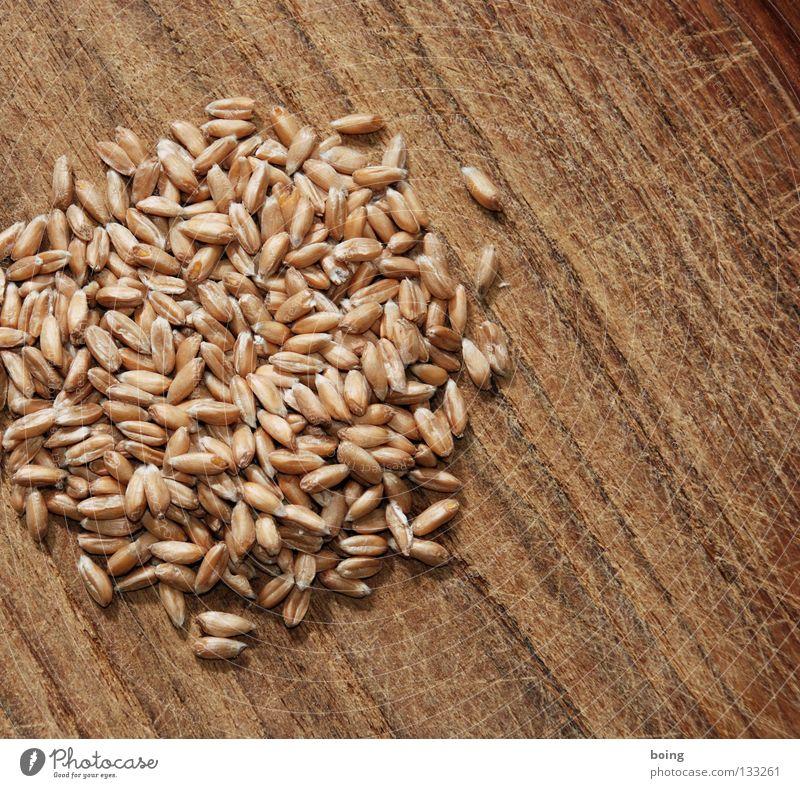 Haufen Dinkel Mühle zerkleinern Mehl Roggen Weizen Gerste Grünkern Brot Müsli Vollkorn ökologisch Sandale Bäcker Bäckerei Korn Vorrat dreschen Backwaren