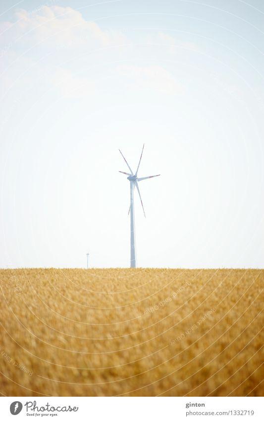 Windrad Landwirtschaft Forstwirtschaft Energiewirtschaft Technik & Technologie Erneuerbare Energie Windkraftanlage Wolken Feld heiß hell trocken Wärme Industrie