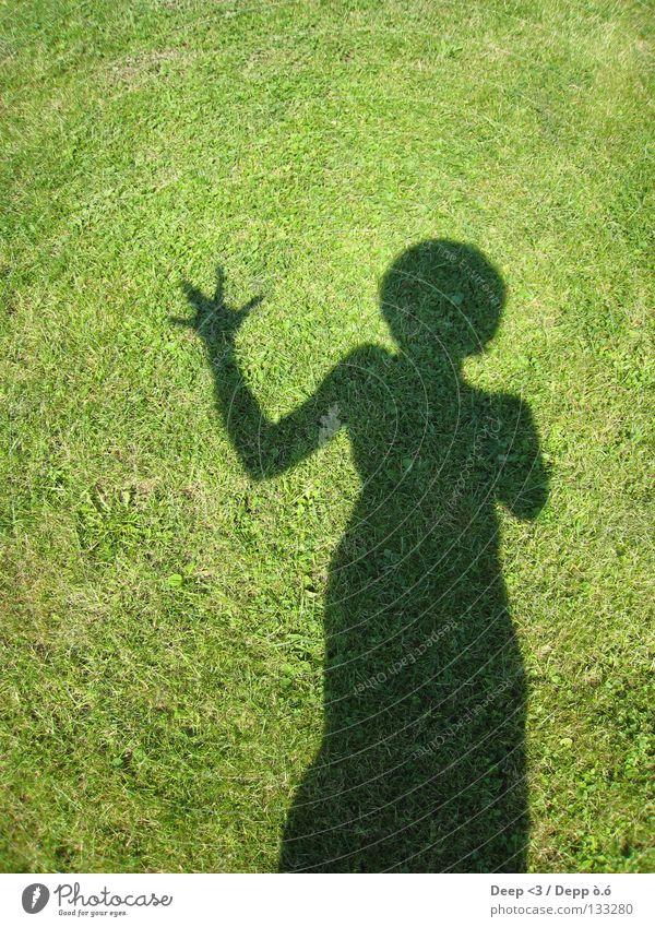 \ x / i TT e N Hand grün Pflanze Sonne Sommer Freude schwarz Wiese dunkel Arme Unsinn Knockout Witten