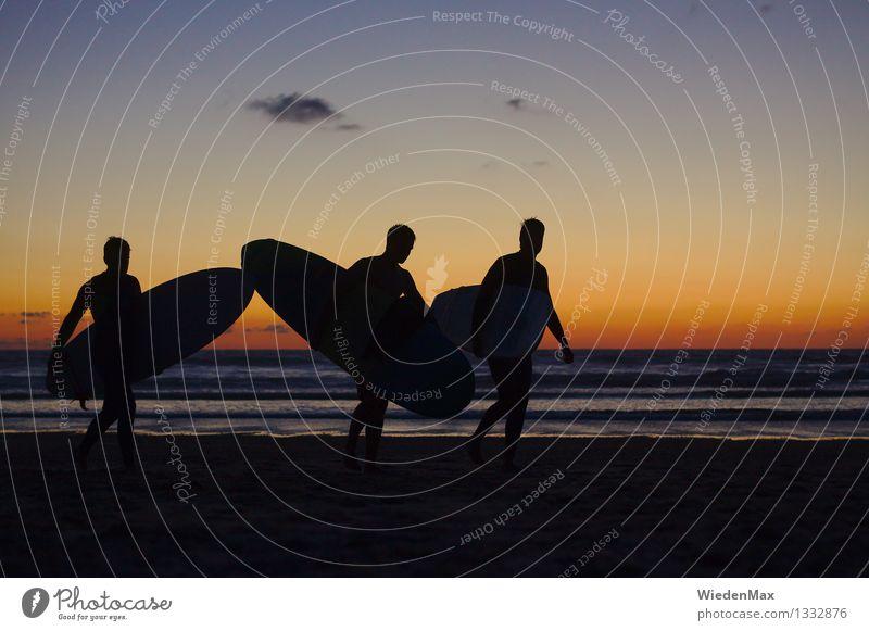 Surfers Dream Surfbrett Sommerurlaub Meer Mensch Freundschaft 3 18-30 Jahre Jugendliche Erwachsene Sonne Sonnenaufgang Sonnenuntergang Strand Atlantik Erholung