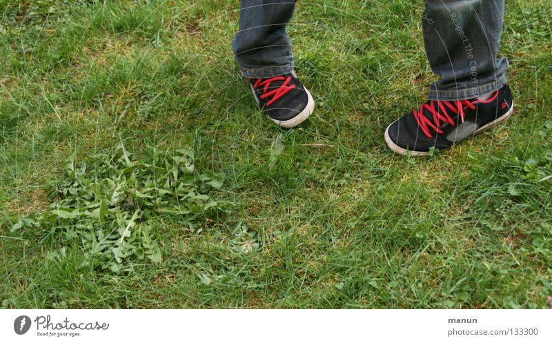 cordon rouge Mensch Jugendliche weiß grün rot schwarz Wiese Gras Garten Schuhe Beine Coolness Jeanshose Löwenzahn lässig schick