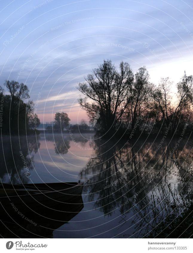 Blaue Stunde am See Wasser Sonne ruhig Erholung Spielen Wasserfahrzeug Zufriedenheit Nebel Romantik Tau Teich Ruderboot Paddel Wasserspiegelung