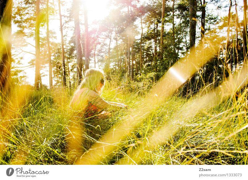 Chilltag Lifestyle elegant Stil feminin Junge Frau Jugendliche 18-30 Jahre Erwachsene Natur Landschaft Sommer Schönes Wetter Gras Wiese Mode Kleid brünett