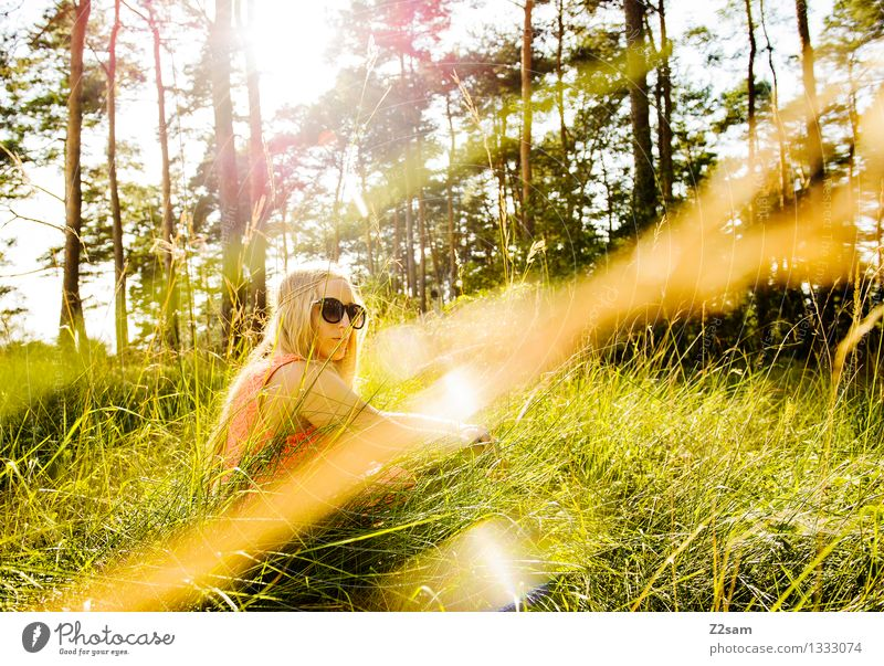 Einfach mal chillen Natur Jugendliche schön Sommer Junge Frau Sonne Baum Landschaft Erholung ruhig Wald 18-30 Jahre Erwachsene Wiese feminin Stil