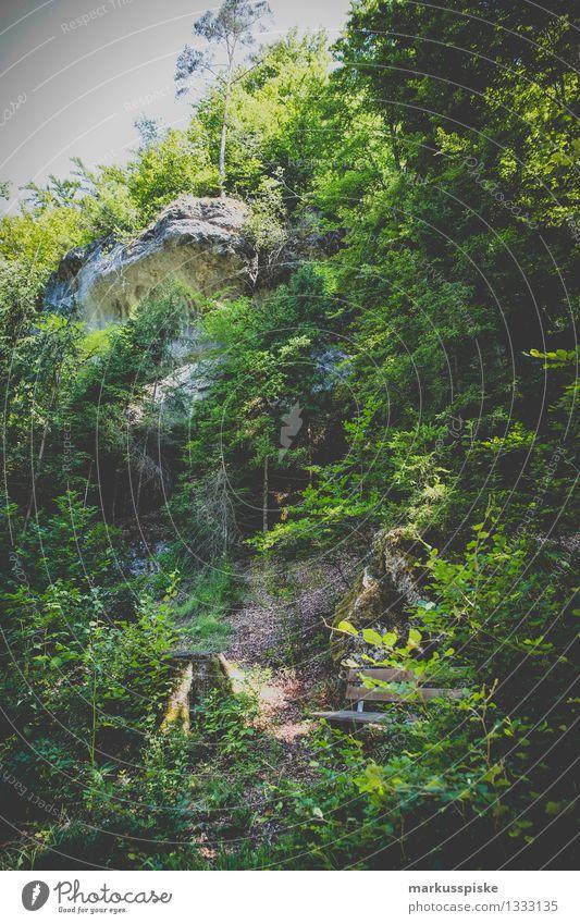 frankenjura - unteres püttlachtal Ferien & Urlaub & Reisen Sommer Erholung ruhig Ferne Wald Berge u. Gebirge Bewegung Sport Spielen Felsen Zufriedenheit