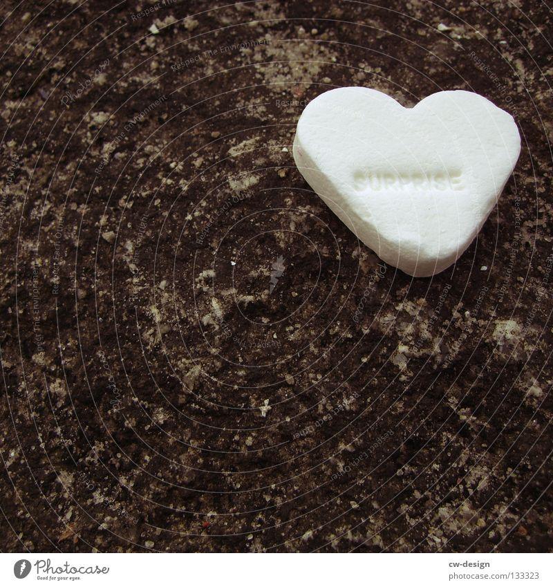 LONELY HEART Süßwaren Herz herzförmig weiß Makroaufnahme süß Liebe Hintergrund neutral Textfreiraum unten Textfreiraum links lecker 1 einzeln Bonbon