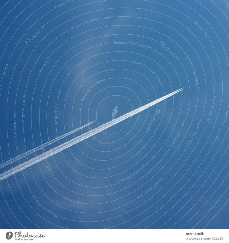 Wettflug Himmel blau Ferien & Urlaub & Reisen Ferne träumen Flugzeug Geschwindigkeit Luftverkehr Schönes Wetter Flughafen Sportveranstaltung Süden