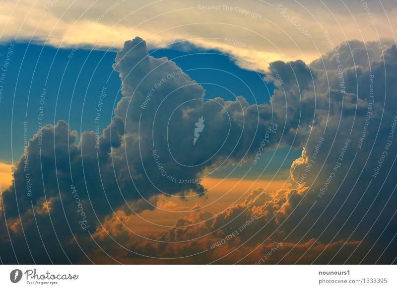Gewitterfront Umwelt Urelemente Wassertropfen Himmel Gewitterwolken Sonnenlicht Klima Klimawandel Wetter schlechtes Wetter Unwetter Wind Sturm Regen Aggression