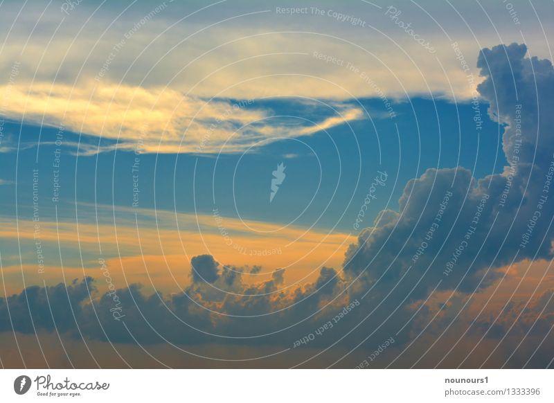 Gewitterfront Umwelt Natur Urelemente Gewitterwolken Klimawandel Wetter schlechtes Wetter Unwetter bedrohlich fantastisch blau gelb gewitterschäden