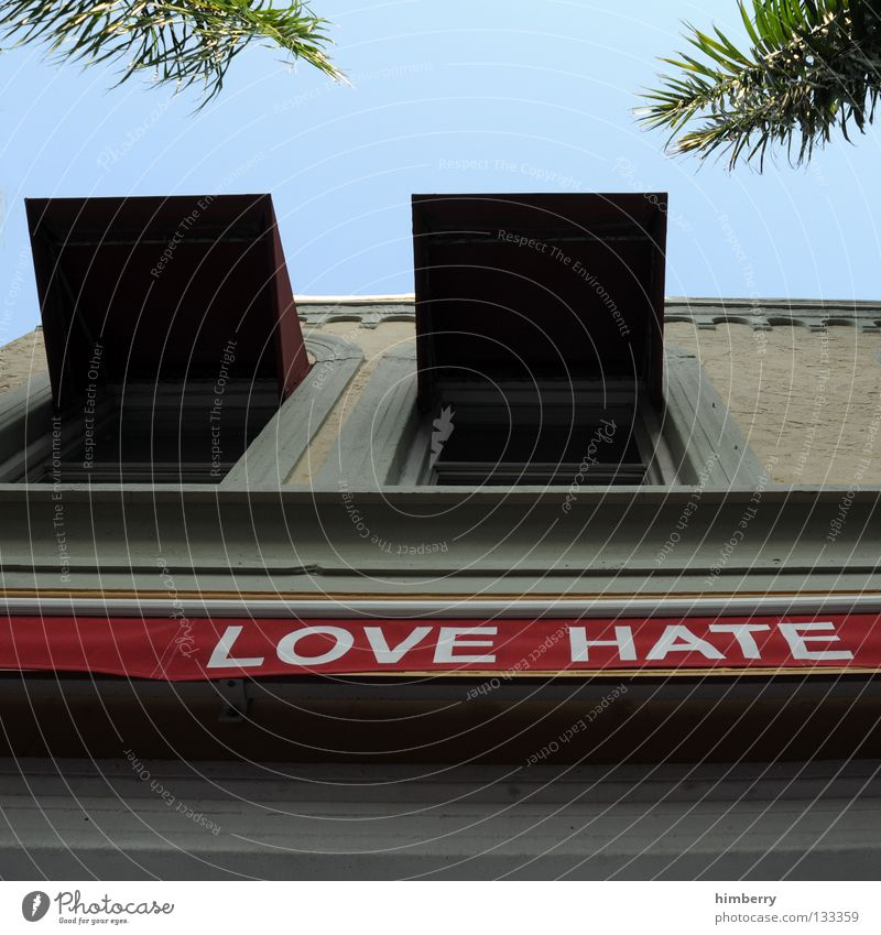 windows miami beach Himmel Liebe Haus Fenster Gebäude Beton Fassade Schriftzeichen Gastronomie Palme Hass Wetterschutz Vorderseite Miami Markise