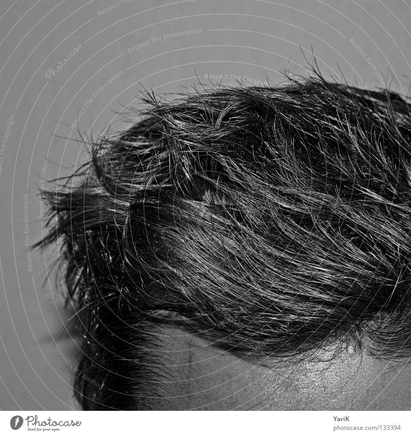 aufgewacht Mann Kopf grau Stil Haare & Frisuren geschlossen Wildtier dünn Müdigkeit Friseur durcheinander geschnitten Stirn Haarschnitt aufwachen