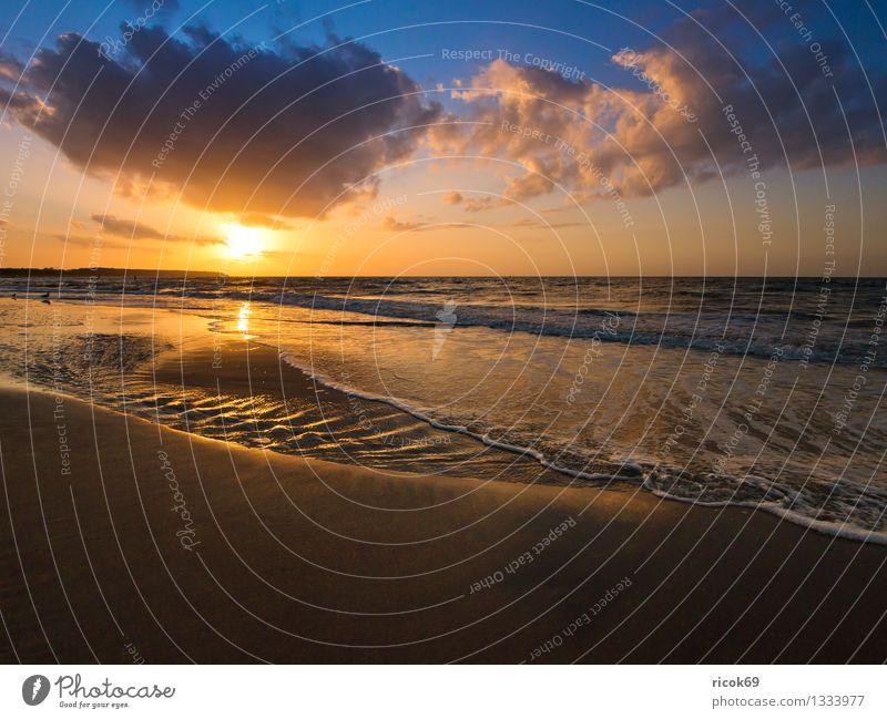 Abends an der Ostseeküste Natur Ferien & Urlaub & Reisen blau Wasser Meer Landschaft ruhig Wolken Strand Küste Tourismus Idylle Wellen Romantik
