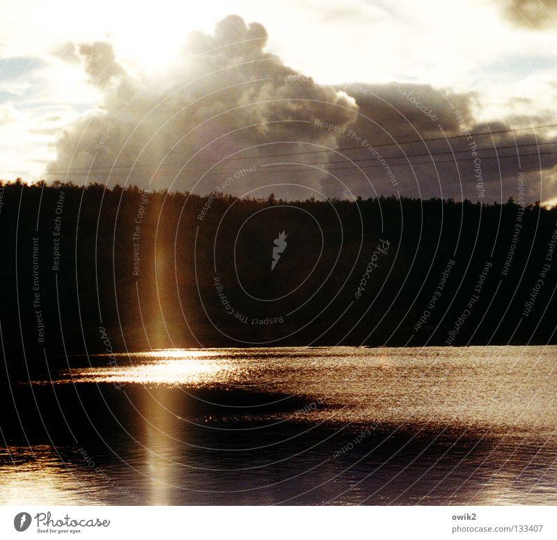 Guten Morgen Finnland ruhig Ferien & Urlaub & Reisen Ferne Sommer Wellen Landschaft Pflanze Himmel Wald See leuchten hell Idylle Lichtsäule scheinend