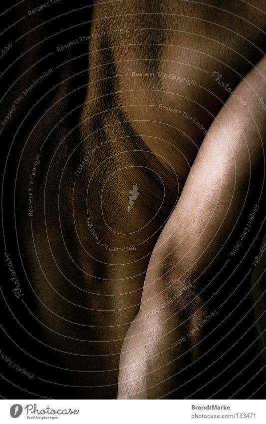 sdark Schulter Mann schwarz braun abstützen Muskulatur stark Schwäche diagonal Kraft Akt Rücken Tattoo Low Key Arme Strukturen & Formen Haut Falte Hautfalten