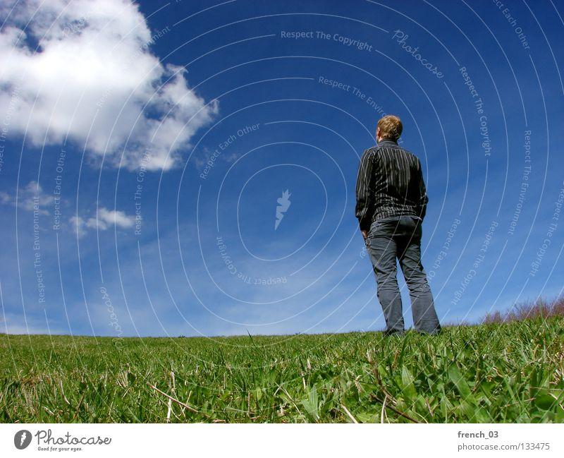 Ausblick im Frühjahr II Freiheit wandern Arbeitslosigkeit Mensch maskulin Jugendliche Natur Himmel Wolken Frühling Sommer Schönes Wetter Gras Park Wiese Hemd