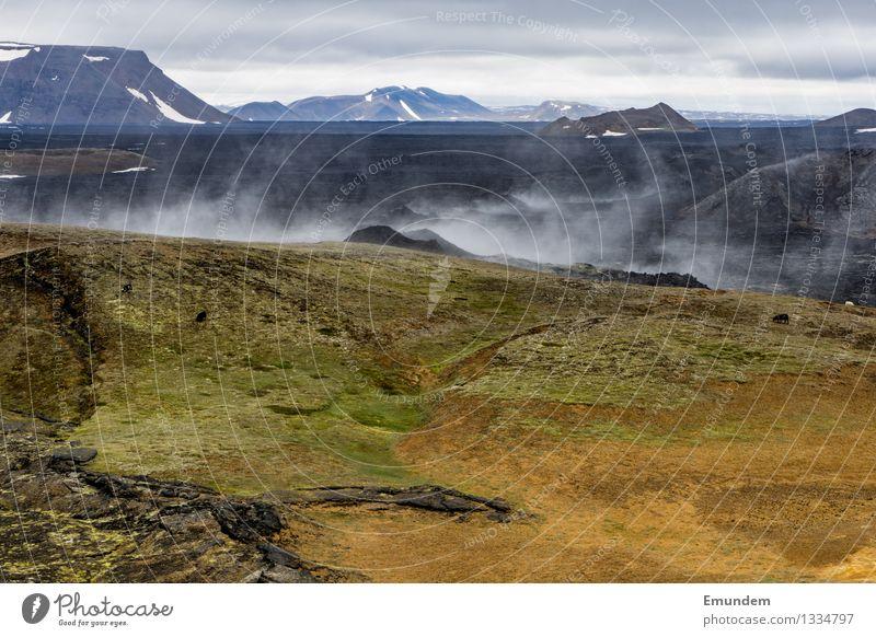 Volldampf Ferien & Urlaub & Reisen Tourismus Ferne Umwelt Natur Landschaft Urelemente Erde Wasser Vulkan Krafla Island heiß wild braun grün schwarz Geothermik
