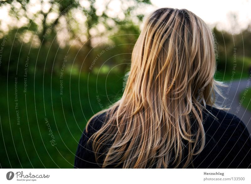 Colors and Emotions Mai Sommer grün leicht Luft Gefühle beweglich angenehm blond schön Leidenschaft gelb Lichtspiel Graß Haare & Frisuren Hair Hairs Flow fresh