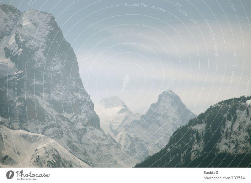 Steile Berge Schweiz Panorama (Aussicht) steil Macht Wand Spielen Berge u. Gebirge Alpen Landschaft hoch Schnee Felsen bergwand groß