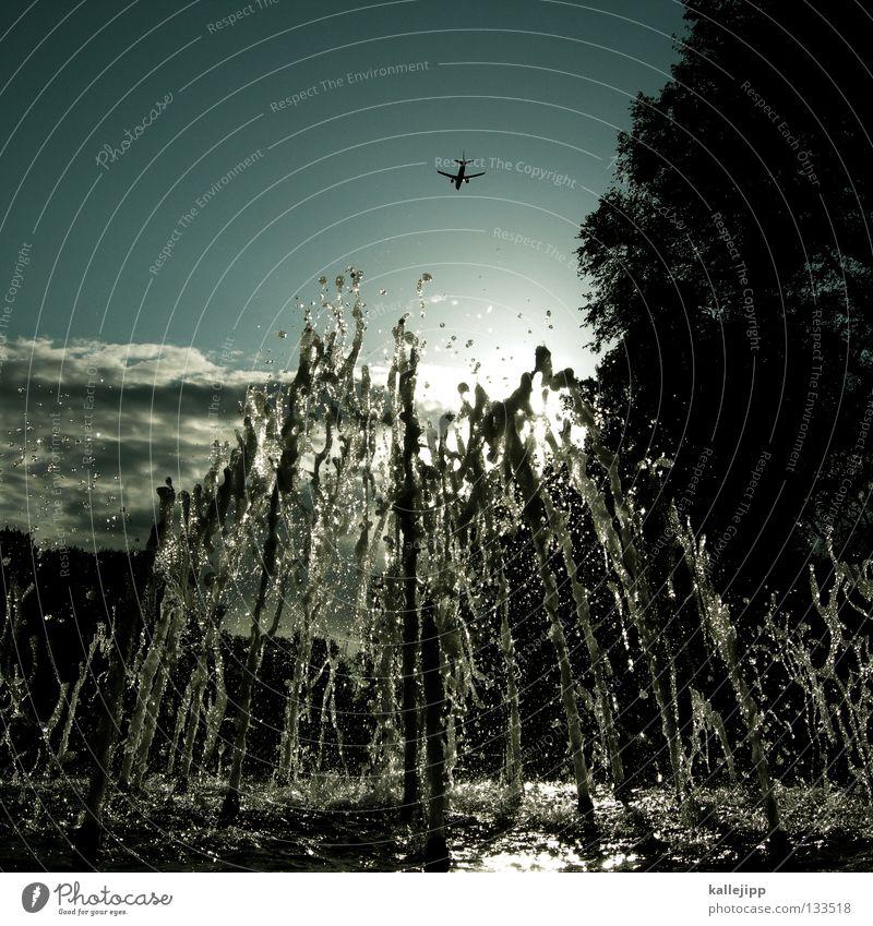 wasserflugzeug Wasser Baum Sonne Leben Garten Arbeit & Erwerbstätigkeit Park frisch Luftverkehr Erfolg Beginn Wassertropfen nass Flugzeug Ziel Brunnen