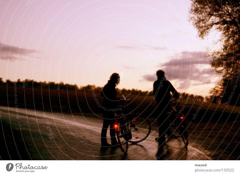 stalemate Sonnenuntergang Wolken Baum Feld Aussicht Asphalt Fahrrad fahren treten Licht ruhig Erholung Gelassenheit Pause Zusammenhalt Nachtaufnahme