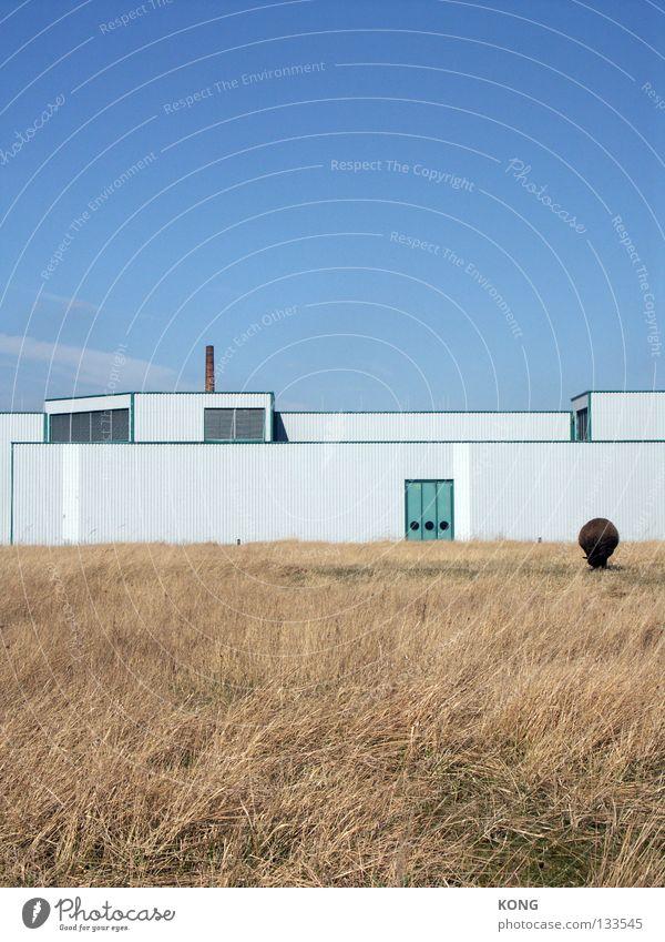 vollautomatischer rasenmäher Himmel weiß Pflanze Haus Einsamkeit Tier Wiese Gebäude Linie Fassade leer Industrie Ordnung Bürgersteig ohne trocken