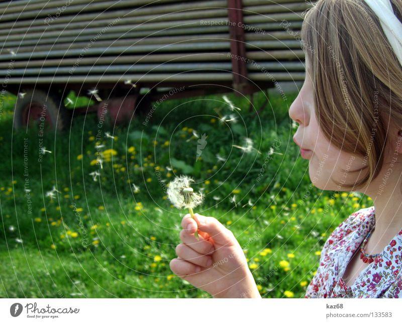 naturkind Kind Natur Jugendliche Mädchen weiß Blume Pflanze Sommer Freude Ferien & Urlaub & Reisen ruhig schwarz Farbe dunkel Erholung Spielen
