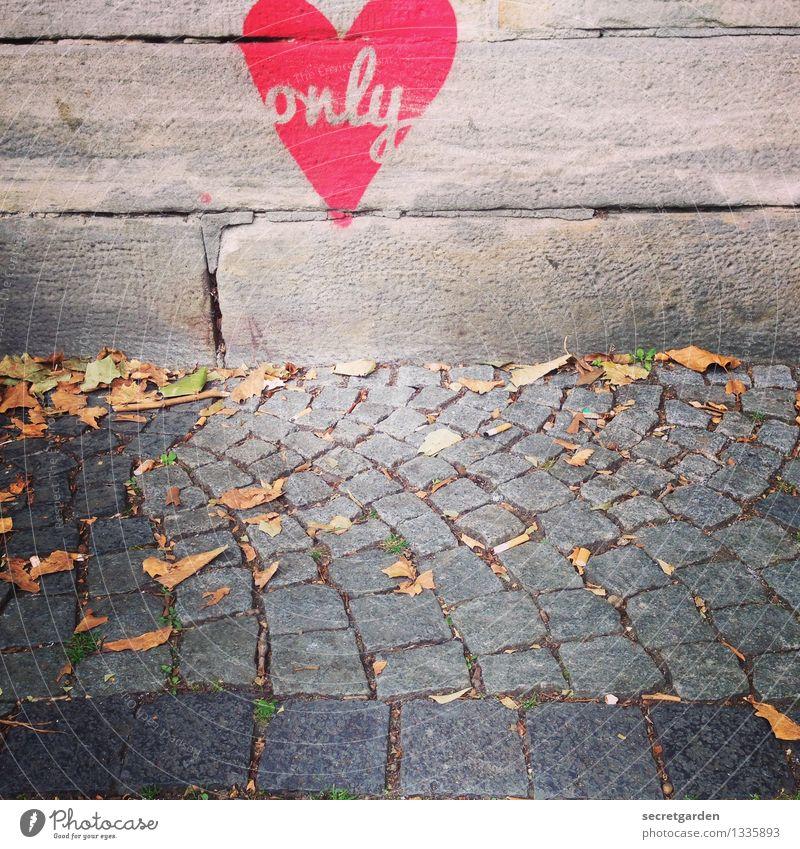 only love. Stadt rot Wand Straße Graffiti Herbst Liebe Gefühle Wege & Pfade Mauer Glück grau Schriftzeichen Herz Romantik Zeichen