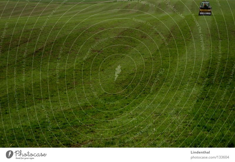 Streifenfrisur Wiese Feld fahren Landwirt Weide erstaunt Traktor drücken Walze Glätten