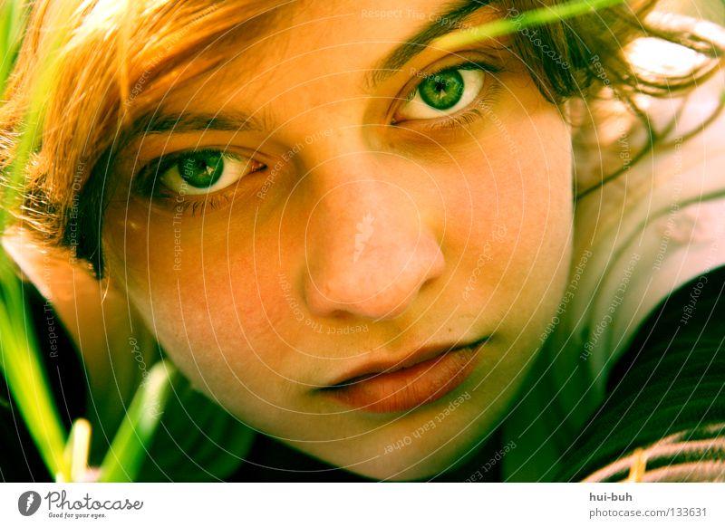 Das Foto mit dem gelöschten Titel Mädchen hässlich Porträt Sommer Wiese Langeweile grün rot Physik heiß transpirieren Picknick Halm Blume Umwelt Frau ugly