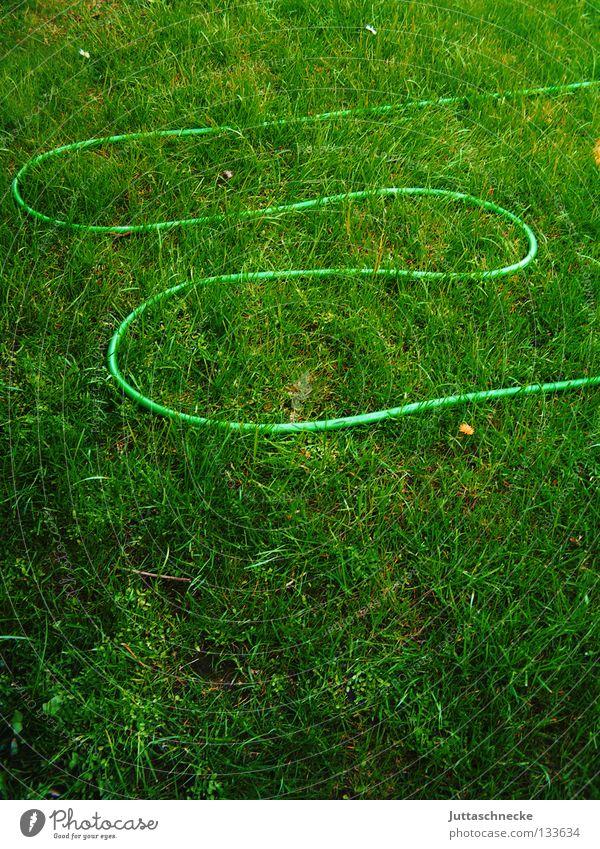 E Schlauch Gartenschlauch Wiese Gras trocken Wachstum sprengen Gärtner grün Gartenarbeit Freizeit & Hobby Arbeit & Erwerbstätigkeit Sommer nass Schlaufe