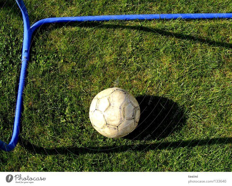 Tor! Stab Gras Leder grün rund ruhig Sport Schatten Fußballtor 1 Vogelperspektive Menschenleer Farbfoto Sportrasen liegen