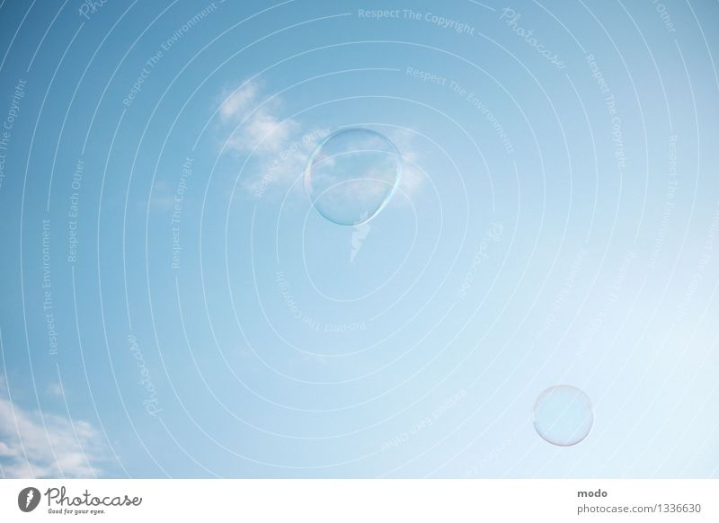 Blowin' in the wind Veranstaltung Natur Luft Himmel nur Himmel Wolken Sommer Wetter Schönes Wetter fliegen dünn Freundlichkeit Fröhlichkeit Unendlichkeit