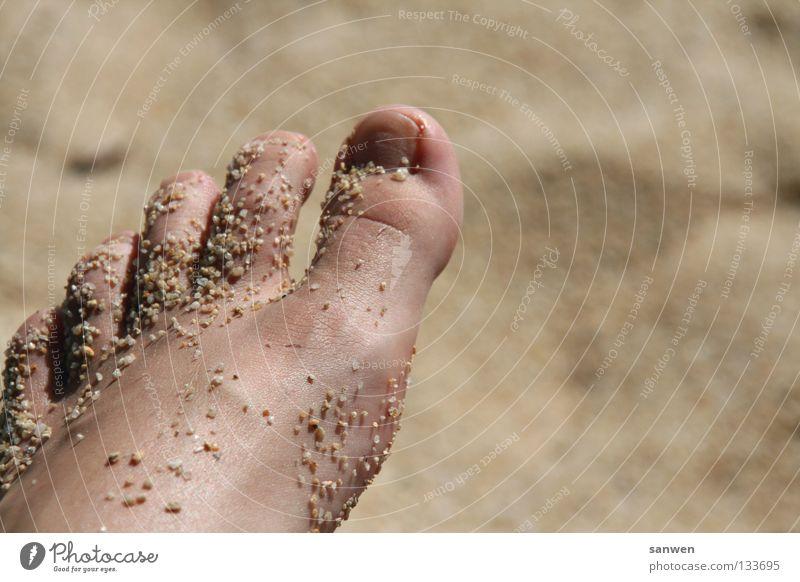fußpeeling à la nature Zehen Zehennagel Körperpflege Gefäße häuten Strand Sand verwöhnen Wohlgefühl Erholung Ferien & Urlaub & Reisen 5 Meer schön Stein