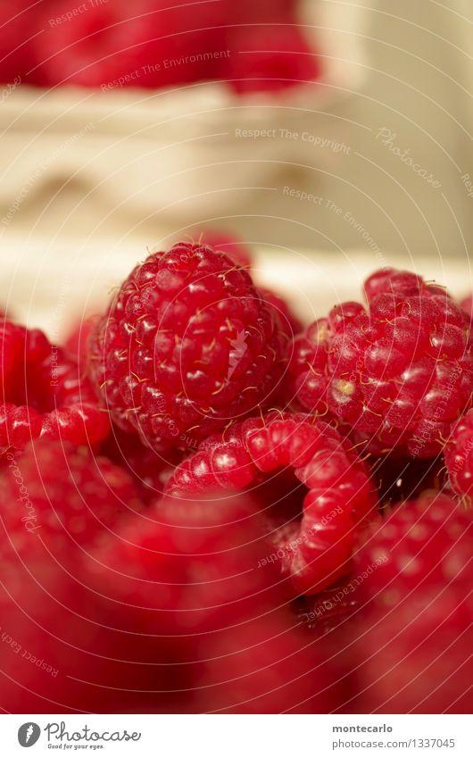 nachtisch Lebensmittel Frucht Dessert Himbeeren Umwelt Natur authentisch einfach frisch Gesundheit klein lecker nah natürlich rund saftig süß trocken wild weich