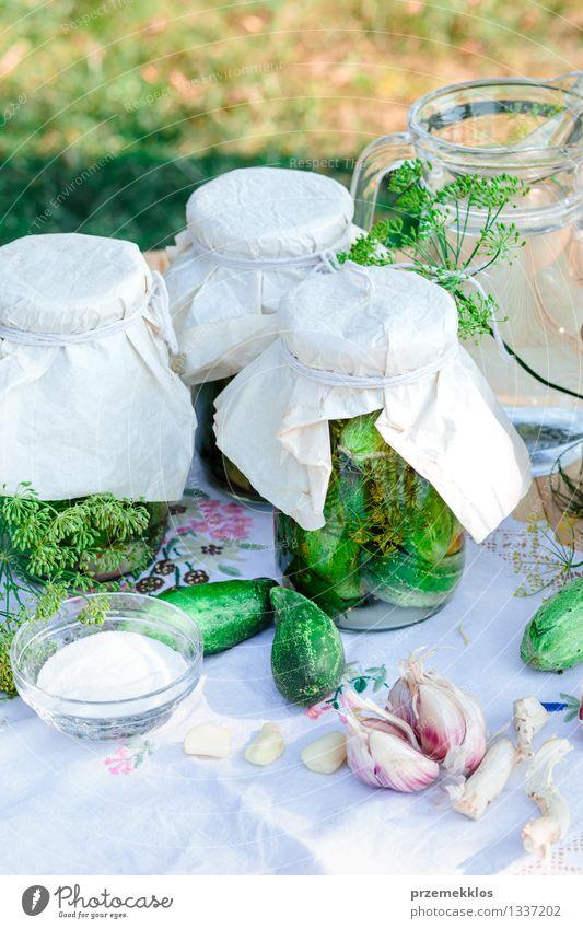 Eingelegte Gurken, die vom Hausgartengemüse und -kräutern gemacht werden Lebensmittel Gemüse Kräuter & Gewürze Bioprodukte Garten Sommer frisch natürlich grün