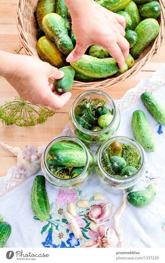 In Essig einlegende Gurken mit Hausgartengemüse und Kräutern Frau grün Sommer Hand Erwachsene natürlich Garten frisch Kräuter & Gewürze Gemüse Bioprodukte