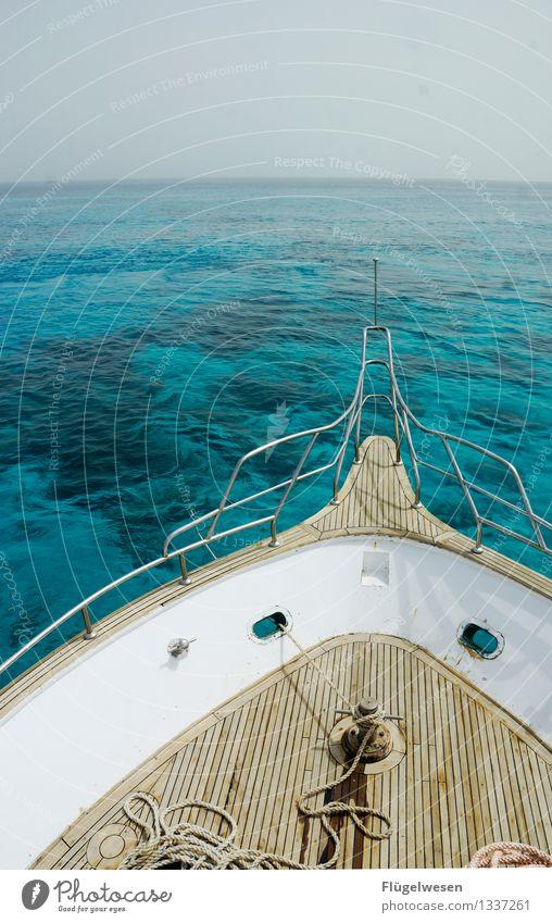 Freie Fahrt vorraus Schwimmen & Baden Ferien & Urlaub & Reisen Tourismus Ausflug Abenteuer Ferne Freiheit Wasser Wellen Küste Bucht Riff Korallenriff Meer