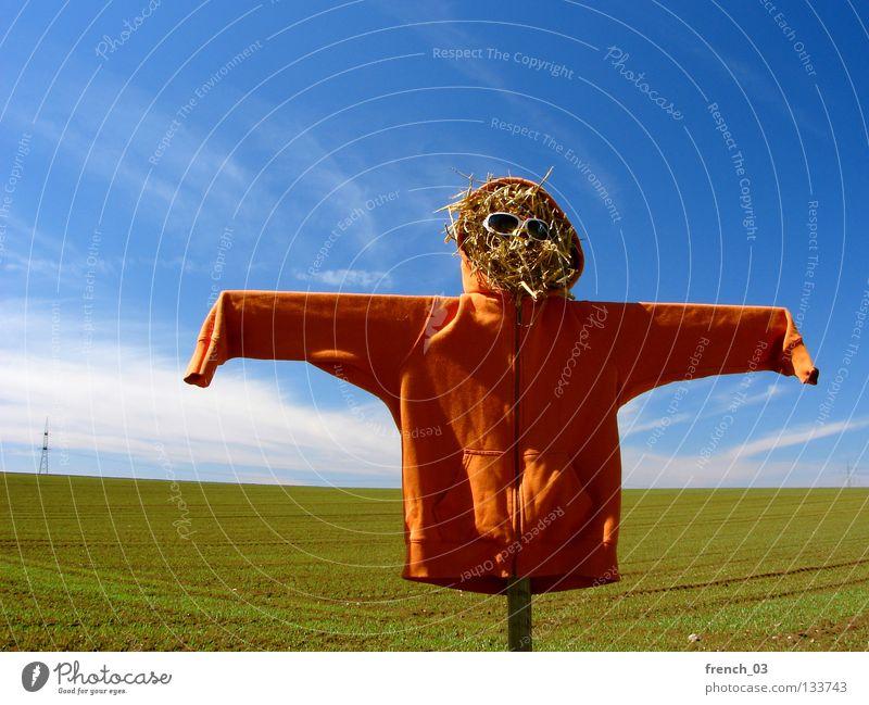 partiell orange Vogelscheuche hässlich Kapuze Feld Pullover Jubiläum 100 Stroh Sonnenbrille Wolken Himmel Brille Holz Geister u. Gespenster gruselig Einsamkeit