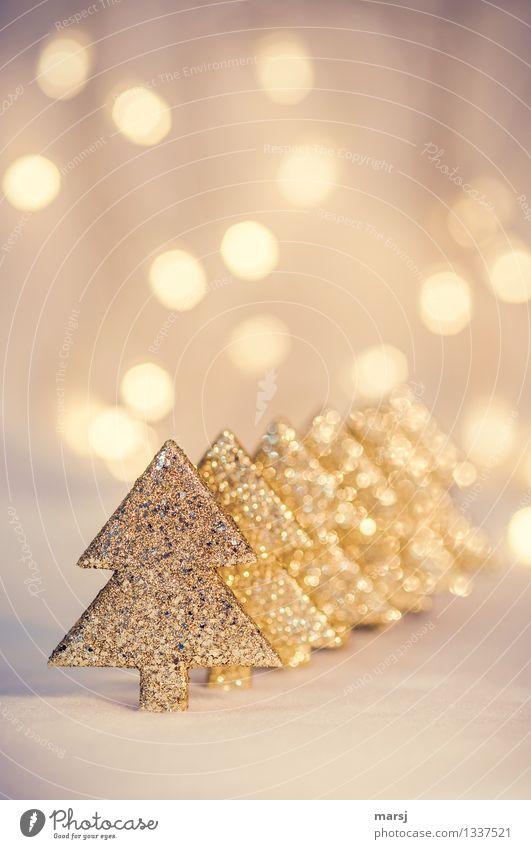 Einfach nur kitschig? Weihnachten & Advent Feste & Feiern glänzend leuchten Dekoration & Verzierung gold Fröhlichkeit Kitsch Weihnachtsbaum Handel Vorfreude eckig aufgereiht Tischdekoration