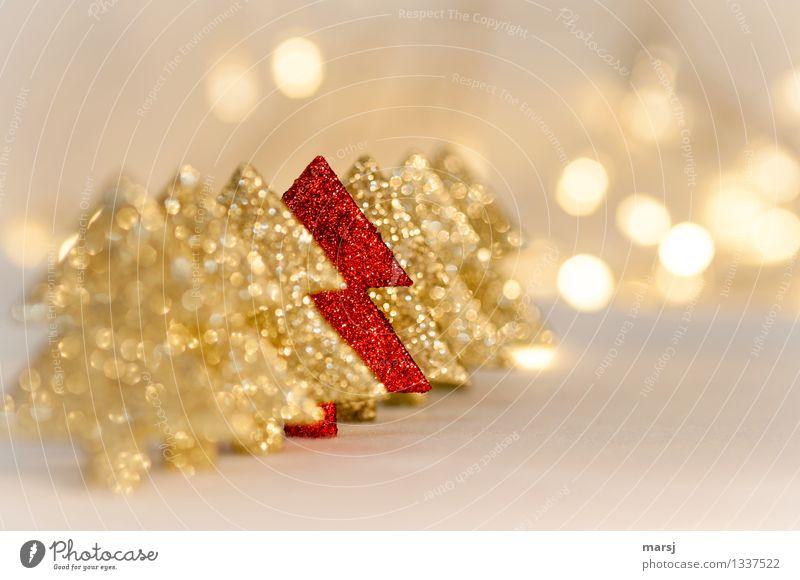 Gelungene Integration Dekoration & Verzierung Feste & Feiern Weihnachten & Advent Kitsch Krimskrams Sammlung Weihnachtsdekoration Weihnachtsbaum leuchten gold