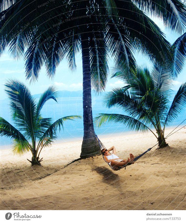 wer will das schon !!?? blau Wasser Ferien & Urlaub & Reisen grün Meer Strand Freude Farbe Blatt Erholung gelb Wärme Küste Sand Wetter Physik