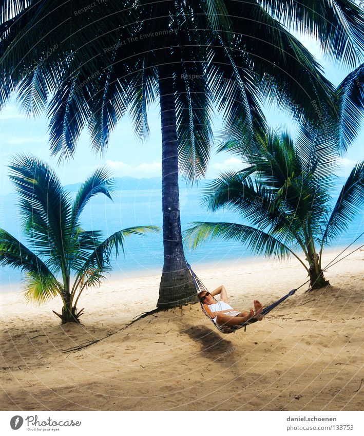 wer will das schon !!?? Palme Strand Hängematte Palmenstrand Thailand Licht Ferien & Urlaub & Reisen Erholung Meer Küste Blatt Baumstamm Physik gelb grün zyan