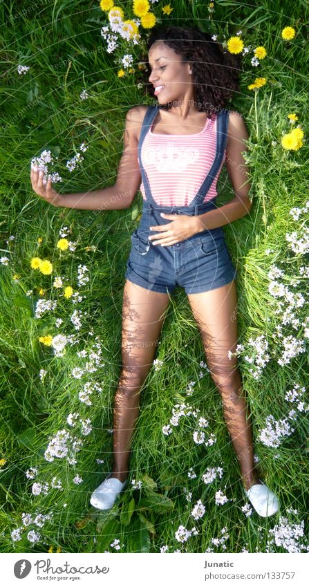 Wie man sich bettet.... weiß Blume grün Sommer Wiese Feld Bett Beet Blumenbeet