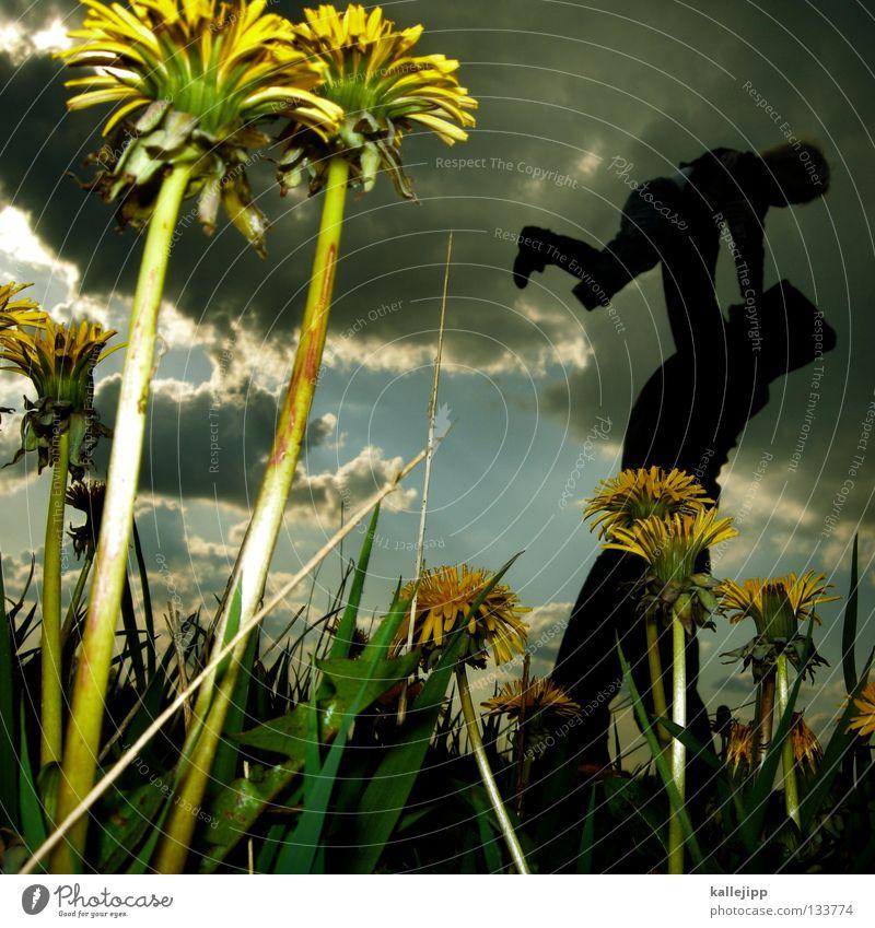 vatertag Vater Kind Gras Wiese Blume Löwenzahn Mann Mensch Vatertag Spielen Wachstum Flugzeug Sommer Frühling springen Kleinkind Luft Leben Lifestyle