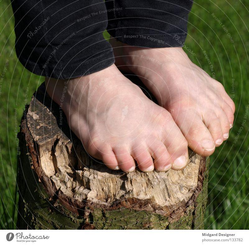 Baumstand Haut Mensch Junge Frau Jugendliche Leben Beine Fuß 1 18-30 Jahre Erwachsene Hose Holz stehen grün Baumstamm Baumrinde Zehen Barfuß Rasen hoch