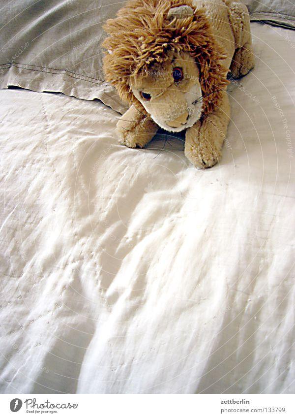 Löwe Spielen Haare & Frisuren Freizeit & Hobby weich Bett Spielzeug Fell Säugetier kuschlig König Bettdecke Kissen Mähne Landraubtier Stofftiere